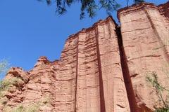 Talampaya red canyon wall Royalty Free Stock Images