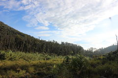 Talang Gunung Стоковые Изображения