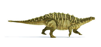 Talarurus dinosaur, photorealistic and scientifically correct re. Presentation. Side view. On white background with drop shadow. Clipping path included Royalty Free Stock Photo