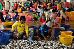 Talaythai seafood market, Thailand Royalty Free Stock Photos
