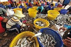 Talaythai seafood market, Thailand Stock Photography