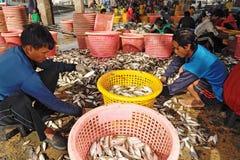 Talaythai seafood market, Thailand Royalty Free Stock Image