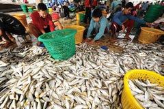 Talaythai seafood market, Thailand Stock Image