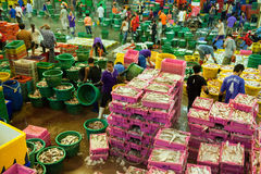 Talaythai seafood market, Thailand Royalty Free Stock Photos