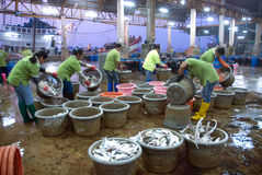 Talaythai seafood market, Trading center of fish and seafood pro Royalty Free Stock Photo