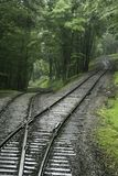 Talbahnbahngleise im Wald lizenzfreies stockfoto