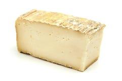 Taleggio cheese stock photo