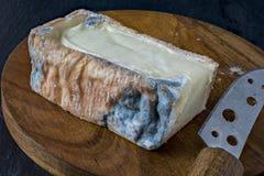 Taleggio, Italian cheese royalty free stock photography