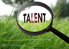 Talent. Magnifying glass with the word talent on grass background. Selective focus royalty free stock images