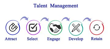 Talent  Management. From attraction to retaining Stock Photo