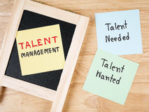 Talent management 35 Royalty Free Stock Photos