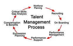 Talent Management Process. Eight components of Talent Management Process royalty free stock photography