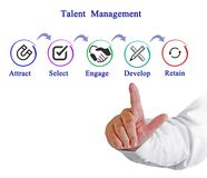 Talent  Management  Process. Components of Talent  Management  Process Stock Image