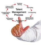 Talent Management Process. Components of Talent Management Process royalty free illustration