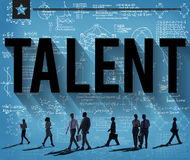 Talent Skill Experience Expertise Professional Concept royalty free stock photos