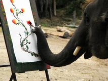 Talented artist. The Elephant draw the picture -talented artist Royalty Free Stock Photo