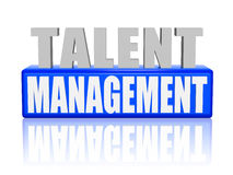 Talentenbeheer in 3d brieven en blok Royalty-vrije Stock Fotografie