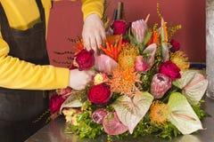 Talentierter Blumenhändler, der reichen Blumenblumenstrauß anordnet Lizenzfreie Stockfotos