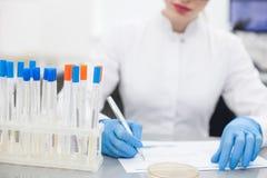 Talentierter weiblicher Forscher tut Schreibarbeit Lizenzfreie Stockfotos