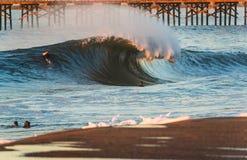 Talento della rottura della riva della spiaggia della guarnizione Fotografia Stock