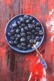 Talerz czarne jagody Obraz Stock