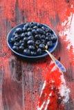 Talerz czarne jagody Zdjęcia Royalty Free