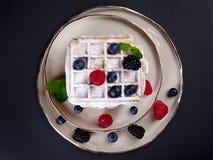 Talerz dom zrobił belgijskim gofrom z lodowym okurzaniem, świeżymi jagodami i nowymi liśćmi, obraz stock
