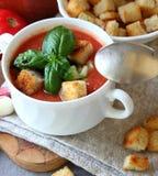 Talerz gazpacho Zdjęcie Royalty Free