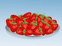 Talerz pełno truskawki, łąkowe truskawki Soczyste jagody, zbiera Fotografia Stock