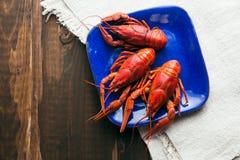 Talerz z czerwieni gotowanymi crayfishes Obraz Royalty Free
