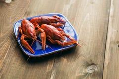 Talerz z czerwieni gotowanymi crayfishes Fotografia Royalty Free