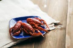 Talerz z czerwieni gotowanymi crayfishes Fotografia Stock