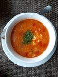 Talerz z pomidorową polewką zdjęcie stock
