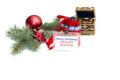 Talerz z wpisowi boże narodzenia, nutlets i coniferou, Obraz Royalty Free