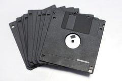 talerzowy floppy Zdjęcie Royalty Free