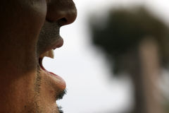 Talk. Close up of a male face (low depth of field royalty free stock image