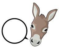 Talk donkey Royalty Free Stock Photography