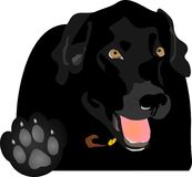 Talk to the Paw.... Black Labrador holding up the paw, saying Talk to the Paw!  Play on words Royalty Free Stock Photo