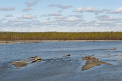 Talkeetna river Stock Images