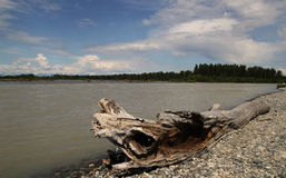 Talkeetna River in Summer stock image