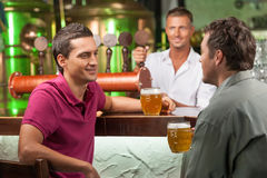 Talking at bar. Two cheerful male friends talking at bar and drinking beer while bartender serving beer at the background stock photo