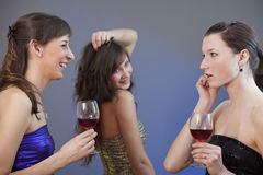 Talking and drinking at the party Royalty Free Stock Image