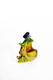Talking frog. Funny frog talking,on the white background Stock Images