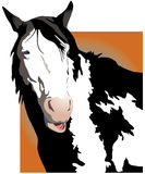 Talking Horse. Illustration of black and white horse talking Royalty Free Stock Photography