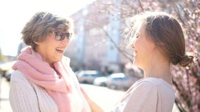 Talking mother and adult daughter on the street in the spring. Bright morning sun, mother`s day, daughters day stock video