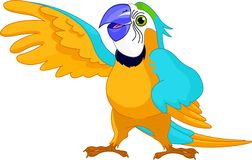 Talking Parrot Royalty Free Stock Photos