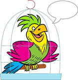 Talking parrot Stock Images