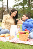 Talking In The Picnic Park. Two people talking in picnic summer day outdoor in park royalty free stock image