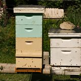 Tall Apiary Beehives. Farmer`s two apiary beehives located in a secure area stock photo