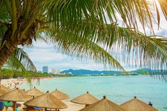 Tall, beautiful palm trees hang over the sea, on the shore stand thatched umbrellas, sunny paradise. tropical. Asia Royalty Free Stock Photography